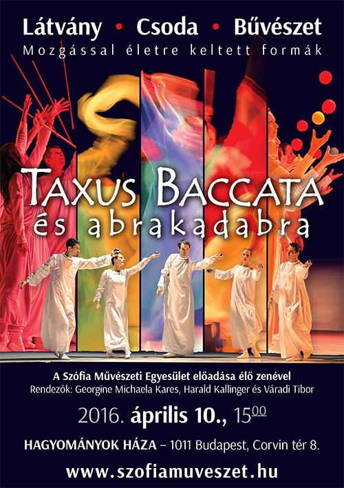 Taxus Baccata plakát